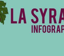 infographie Syrah
